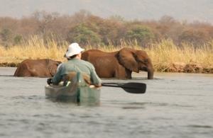 Kariba & Zambezi