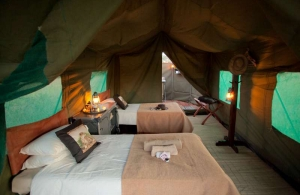 thetents19