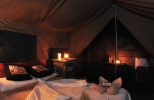 thetents3