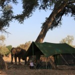 Meeru Tents RED